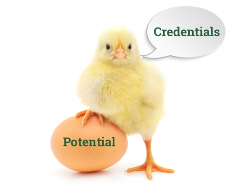 "The ""Chicken or Egg"" Debate Among HR Leaders: Credentials or Potential When Hiring?"